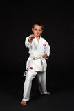 Traditional karate right stance Royalty Free Stock Images