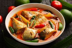 Traditional Kerala fish curry. With coconut milk and fresh mangoes Stock Photo