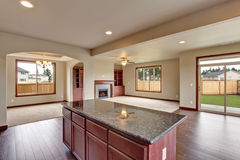 Traditional kitchen with dark hardwood floor. Stock Photography