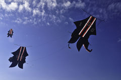 Traditional Kite Royalty Free Stock Images