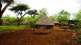 Traditional Konso tribe village in Karat Konso , Ethiopia. Traditional Konso tribe village in Karat Konso in Ethiopia Royalty Free Stock Photo