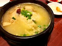 Traditional Korean food Ginseng chicken soup Stock Photos