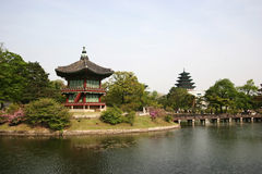 Traditional korean garden Stock Photo