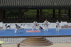 Traditional Korean Martial art Performance and Experience Event show . Royalty Free Stock Images