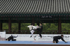 Traditional Korean Martial art Performance and Experience Event show . Royalty Free Stock Image