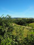 Traditional landscape of Monts du Lyonnais in spring, France stock photo