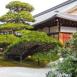 Traditional landscaped japanese garden detail in Japan. Traditional landscaped japanese garden detail with old green pine tree and wooden architecture building royalty free stock photos