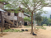 Traditional Laos Hill Tribe Village. A typical scene at a small hill tribe village in northern Laos with pigs and dogs running around in the dirt streets royalty free stock photos