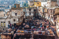 Traditional leather tannery in Fez, Morocco Royalty Free Stock Photo