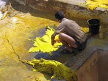 Traditional leather tanning. In Fez, Morocco royalty free stock image