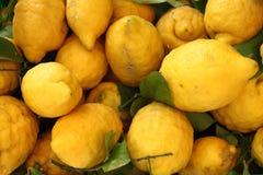 Traditional lemons in Amalfi Coast. Italy royalty free stock photo