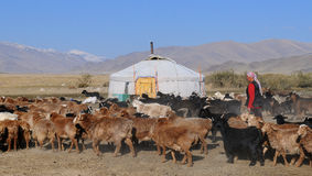 Traditional Life in Mongolia Royalty Free Stock Photos