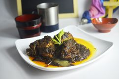 Traditional local dish from malaysia called beef opor.mix and cook with all asian spice for tasty and aromatic flavour. Opormix stock photos