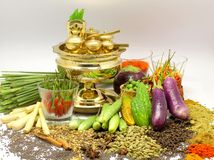 Traditional Malay Cuisine Ingredient. A display of Malay Cuisine Ingridients consist of local vegetables , spices and herbs surrounding the Tepak Sireh Stock Image