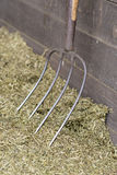 Traditional manure fork on a bale of cattle feed. Traditional manure fork with four teeth for spreading of cattle feed Royalty Free Stock Image