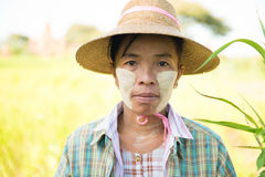 Traditional mature Asian female farmer Royalty Free Stock Images