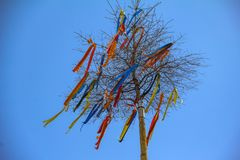 Maypole with colored ribbons. A traditional Maypole with colored ribbons on blue background royalty free stock photos