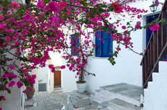 Traditional mediterranean house. Covered with pink flowers - Skiathos, Greece Royalty Free Stock Photo