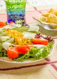 Traditional mexican food with salad and nachos Royalty Free Stock Images