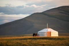 Traditional Mongolian ger on a mountain backdrop in sunset light. A single traditional family ger in warm afternoon light. Khuvsgol, Mongolia Stock Photos