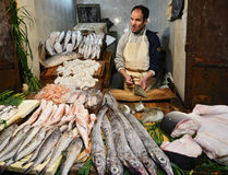 Traditional moroccan fish market Stock Image