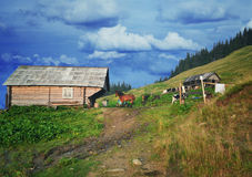 Traditional mountain house on green field in a village Royalty Free Stock Photos