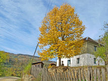 Traditional mountain village house in Bjelusa in Western Serbia Stock Images