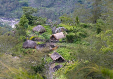 A traditional  mountain village in Papua Stock Photography