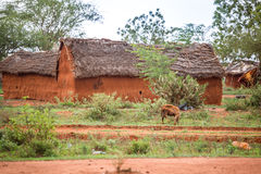 Traditional mud, african houses in Kenya Royalty Free Stock Images