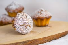 Traditional muffins or baked basic cupcakes close up, selective focus royalty free stock photography