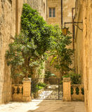 Traditional narrow street in Mdina. Traditional narrow silent street in Mdina. Malta Royalty Free Stock Images