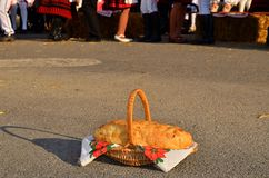 Traditional new bread on Harvest Festival Royalty Free Stock Image