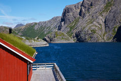 Traditional norwegian fishing house. Traditional red fishing rorbu hut with sod roof on Lofoten islands in Norway stock photos