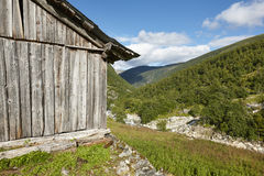 Traditional norwegian wooden farm and forest. Norway rural lands Royalty Free Stock Photography