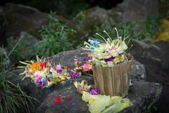 Traditional offerings at Bali Stock Photo