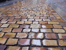 Traditional old cobbles in the rain Royalty Free Stock Images