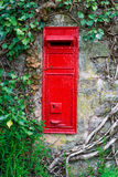 Traditional old English red postbox mounted in stone wall surrounded by ivy. Stock Photography