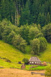 Isolated wooden house at the forest edge in Bucovina, Romania. Old rural house with the forest in background in autumn Stock Image