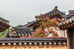 Traditional old korean building with tree and flowers Royalty Free Stock Photography