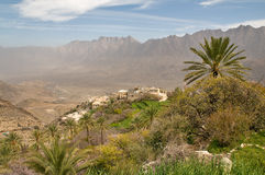 Traditional Omani Farm Royalty Free Stock Image