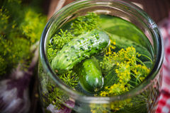 Traditional organic savory pickled gherkins and cucumbers Stock Photo