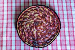 Traditional plum pie Stock Images
