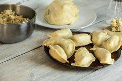 Traditional polish cuisine - delicious, homemade dumplings. Traditional polish cuisine - making delicious, homemade dumplings royalty free stock image