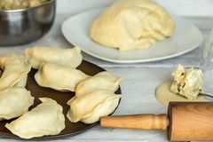 Traditional polish cuisine - delicious, homemade dumplings. Traditional polish cuisine - making delicious, homemade dumplings stock photo