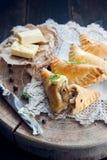 Traditional polish fried pierogi Stock Image