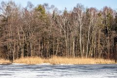 Traditional polish landscape in winter, frozen lake. Royalty Free Stock Photography