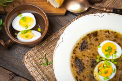 Traditional Polish soup. Royalty Free Stock Images