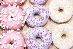 Traditional polish sweets doughnuts closeup royalty free stock photo