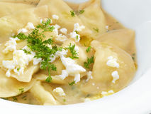 Traditional polish and ukrainian dumplings Royalty Free Stock Photo