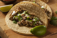 Traditional Pork Tacos Royalty Free Stock Images